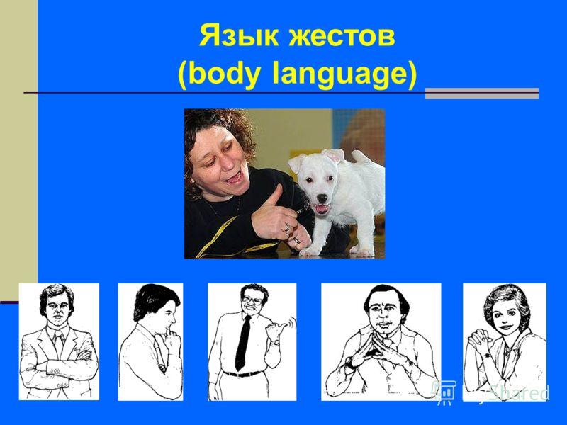 Язык жестов (body language)