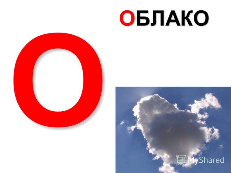 НОСОРОГ Н