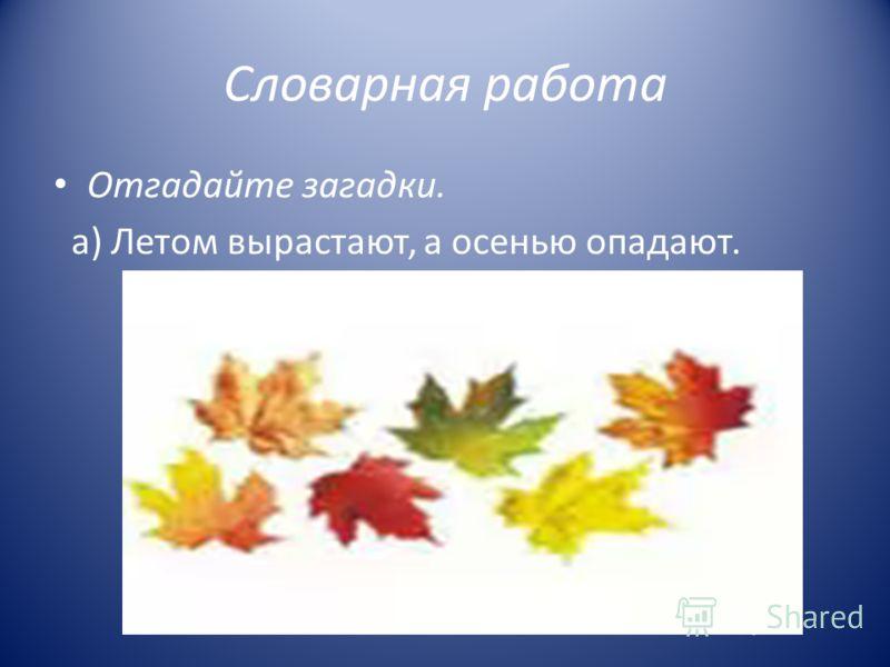 Словарная работа Отгадайте загадки. а) Летом вырастают, а осенью опадают.