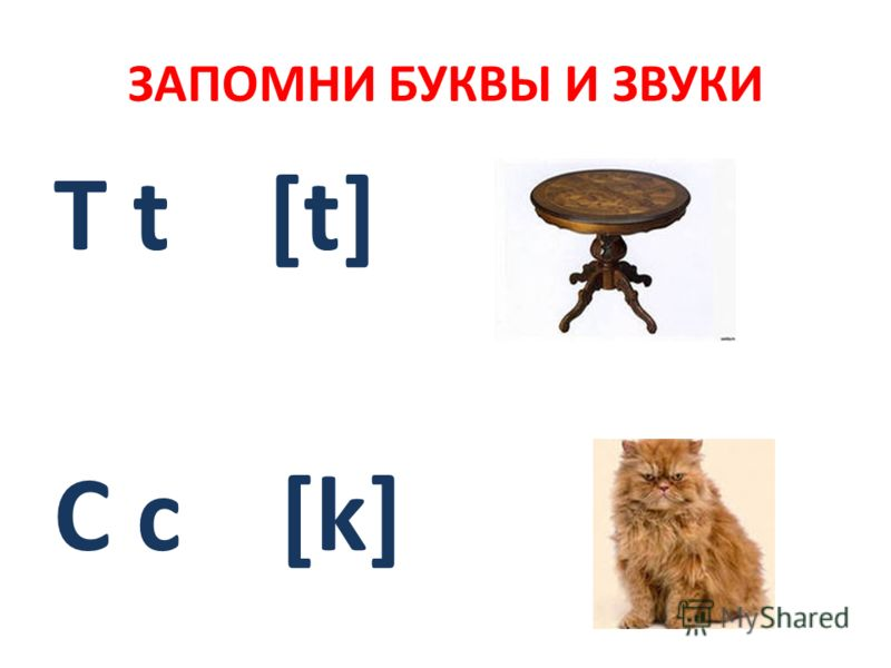 ЗАПОМНИ БУКВЫ И ЗВУКИ T t [t] C c [k]