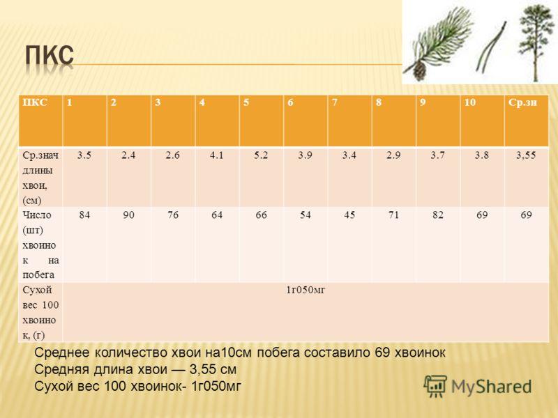 ПКС12345678910Ср.зн Ср.знач длины хвои, (см) 3.52.42.64.15.23.93.42.93.73.83,55 Число (шт) хвоино к на побега 84907664665445718269 Сухой вес 100 хвоино к, (г) 1г050мг Среднее количество хвои на10cм побега составило 69 хвоинок Средняя длина хвои 3,55