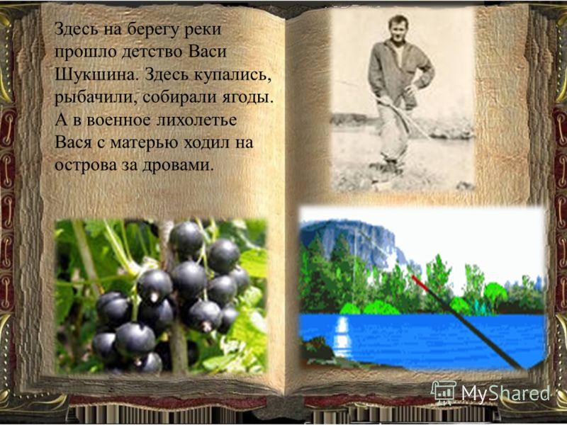 Здесь на берегу реки прошло детство Васи Шукшина. Здесь купались, рыбачили, собирали ягоды. А в военное лихолетье Вася с матерью ходил на острова за дровами.