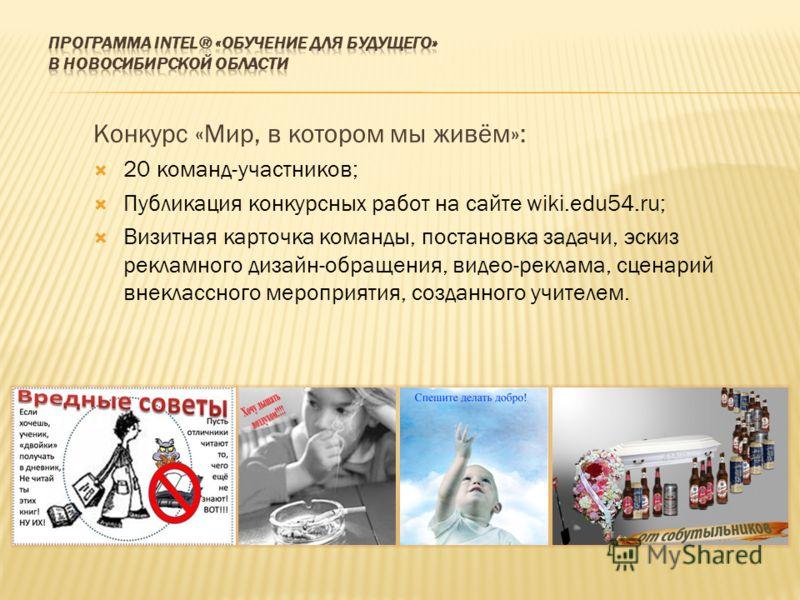 Конкурс «Мир, в котором мы живём»: 20 команд-участников; Публикация конкурсных работ на сайте wiki.edu54.ru; Визитная карточка команды, постановка задачи, эскиз рекламного дизайн-обращения, видео-реклама, сценарий внеклассного мероприятия, созданного