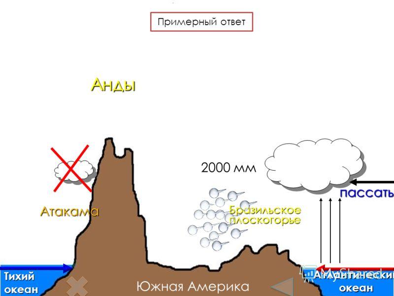 Анды Бразильскоеплоскогорье Тихийокеан Атлантическийокеан пассаты Атакама 2000 мм Южная Америка Примерный ответ