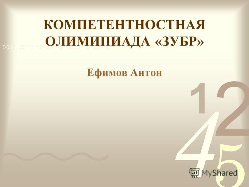 КОМПЕТЕНТНОСТНАЯ ОЛИМИПИАДА «ЗУБР» Ефимов Антон