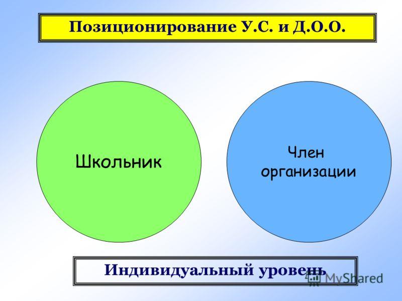 Школьник Член организации Индивидуальный уровень Позиционирование У.С. и Д.О.О.