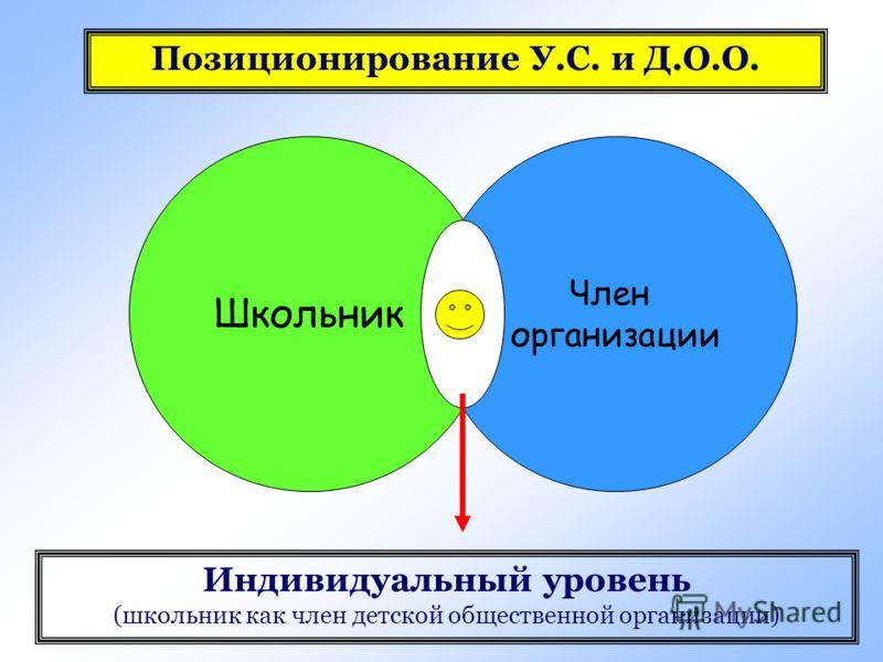 Школьник Член организации Индивидуальный уровень (школьник как член детской общественной организации)