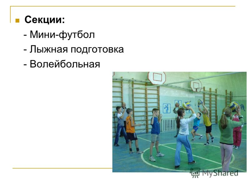 Секции: - Мини-футбол - Лыжная подготовка - Волейбольная