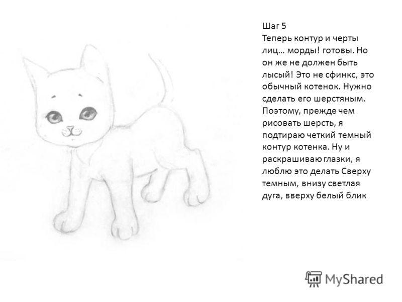 Шаг 5 Теперь контур и черты лиц… морды! готовы. Но он же не должен быть лысый! Это не сфинкс, это обычный котенок. Нужно сделать его шерстяным. Поэтому, прежде чем рисовать шерсть, я подтираю четкий темный контур котенка. Ну и раскрашиваю глазки, я л