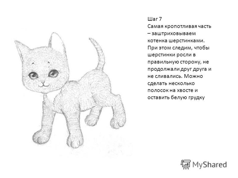 Шаг 7 Самая кропотливая часть – заштриховываем котенка шерстинками. При этом следим, чтобы шерстинки росли в правильную сторону, не продолжали друг друга и не сливались. Можно сделать несколько полосок на хвосте и оставить белую грудку