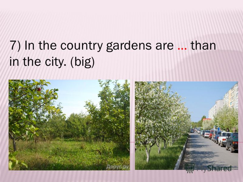 7) In the country gardens are … than in the city. (big)