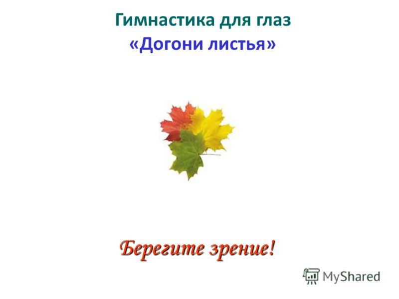 Гимнастика для глаз «Догони листья» Берегите зрение!