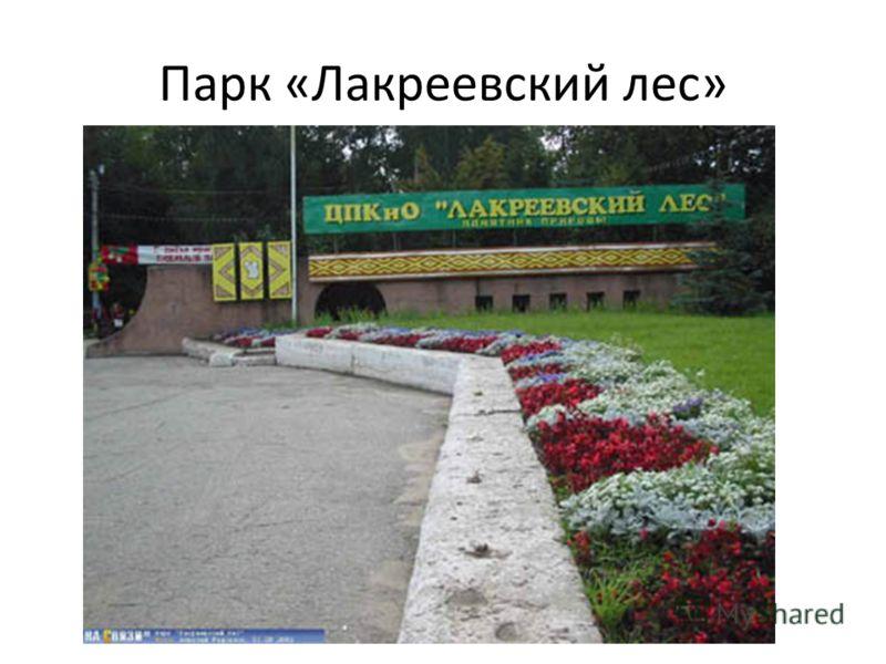 Парк «Лакреевский лес»
