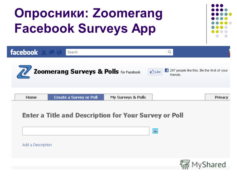 Опросники: Zoomerang Facebook Surveys App