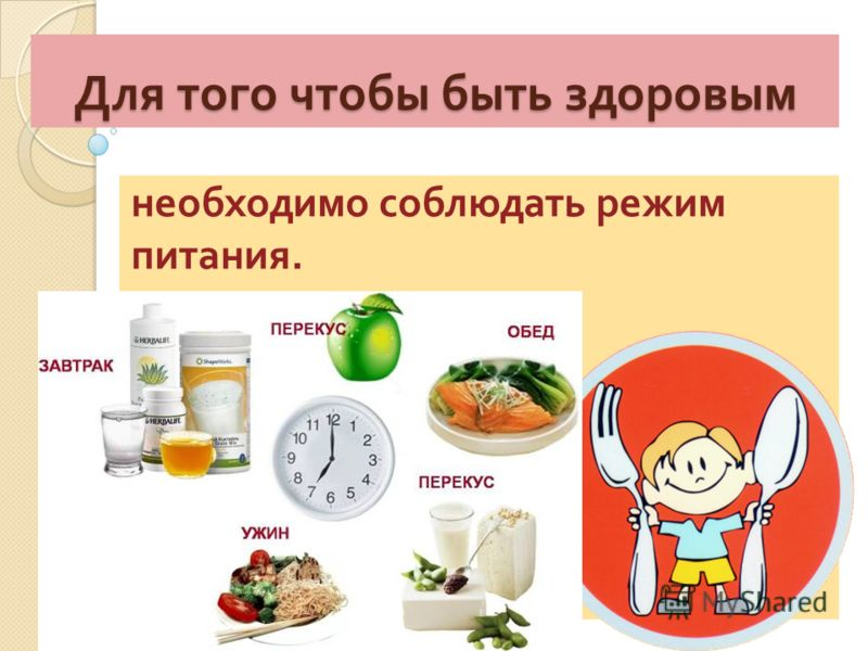 режим питания чтобы похудеть