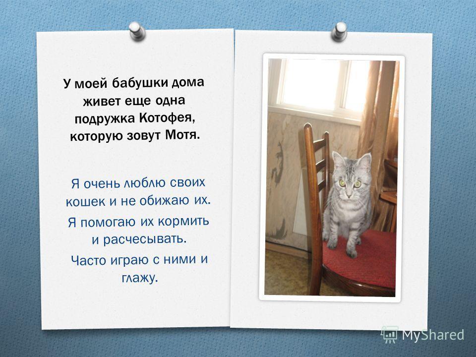 У моей бабушки дома живет еще одна подружка Котофея, которую зовут Мотя. Я очень люблю своих кошек и не обижаю их. Я помогаю их кормить и расчесывать. Часто играю с ними и глажу.