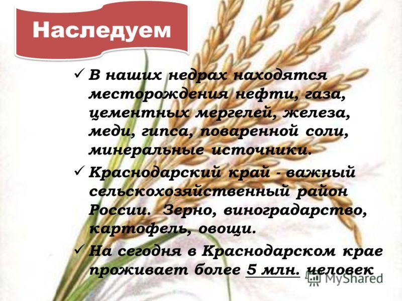 Наследуем В наших недрах находятся месторождения нефти, газа, цементных мергелей, железа, меди, гипса, поваренной соли, минеральные источники. Краснодарский край - важный сельскохозяйственный район России. Зерно, виноградарство, картофель, овощи. На