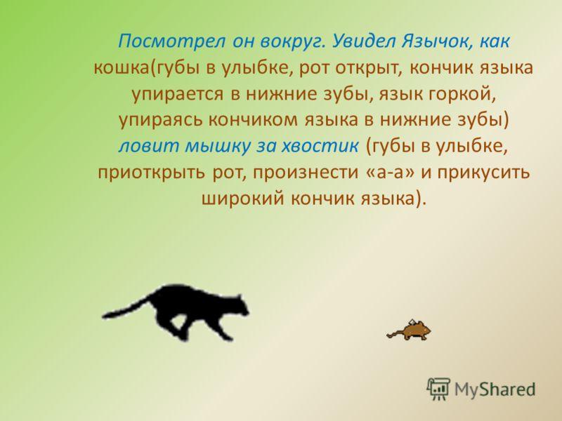 Посмотрел он вокруг. Увидел Язычок, как кошка(губы в улыбке, рот открыт, кончик языка упирается в нижние зубы, язык горкой, упираясь кончиком языка в нижние зубы) ловит мышку за хвостик (губы в улыбке, приоткрыть рот, произнести «а-а» и прикусить шир