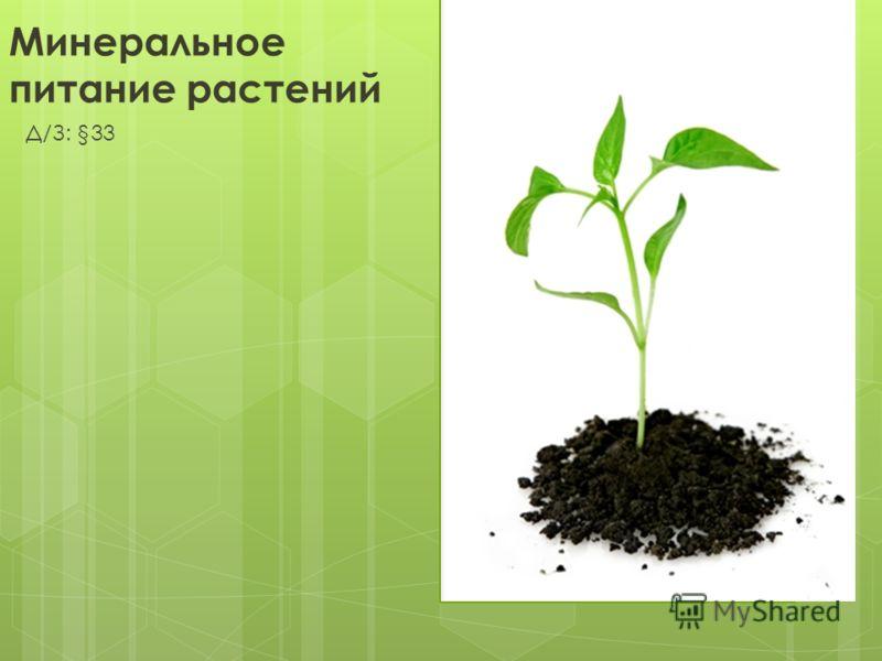 Минеральное питание растений Д/З: §33