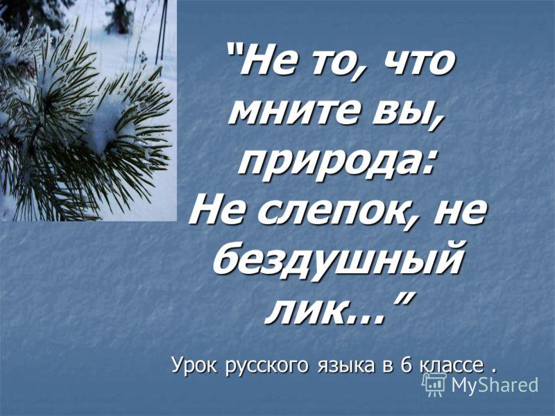 Не то, что мните вы, природа: Не слепок, не бездушный лик…Не то, что мните вы, природа: Не слепок, не бездушный лик… Урок русского языка в 6 классе.