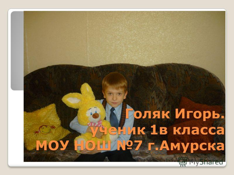 Голяк Игорь. ученик 1в класса МОУ НОШ 7 г.Амурска