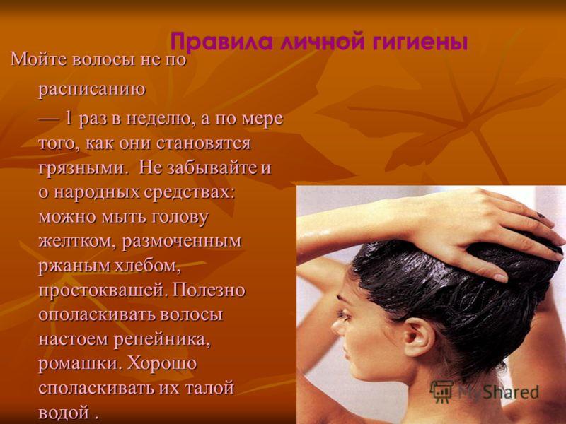 сколько раз в неделю надо мыть голову