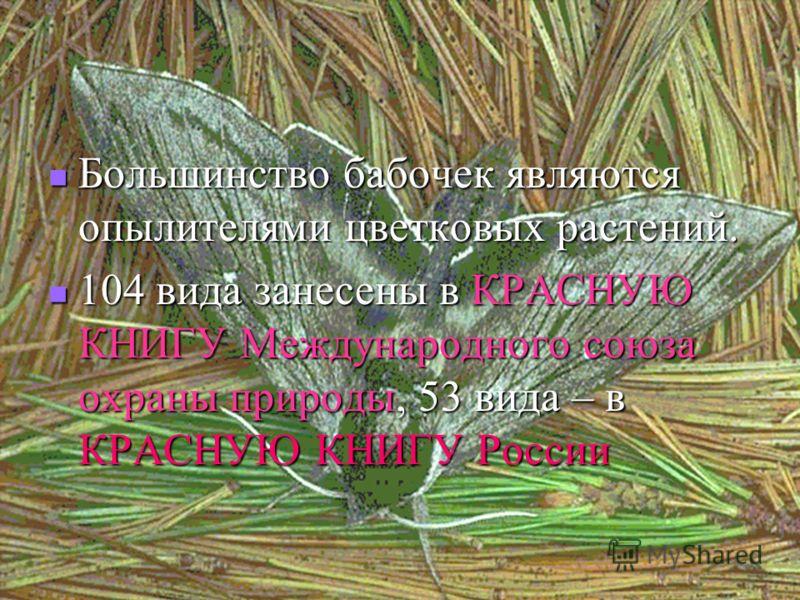 Большинство бабочек являются опылителями цветковых растений. 104 вида занесены в КРАСНУЮ КНИГУ Международного союза охраны природы, 53 вида – в КРАСНУЮ КНИГУ России