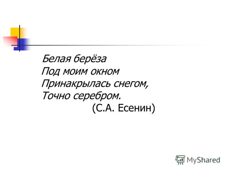 Белая берёза Под моим окном Принакрылась снегом, Точно серебром. (С.А. Есенин)
