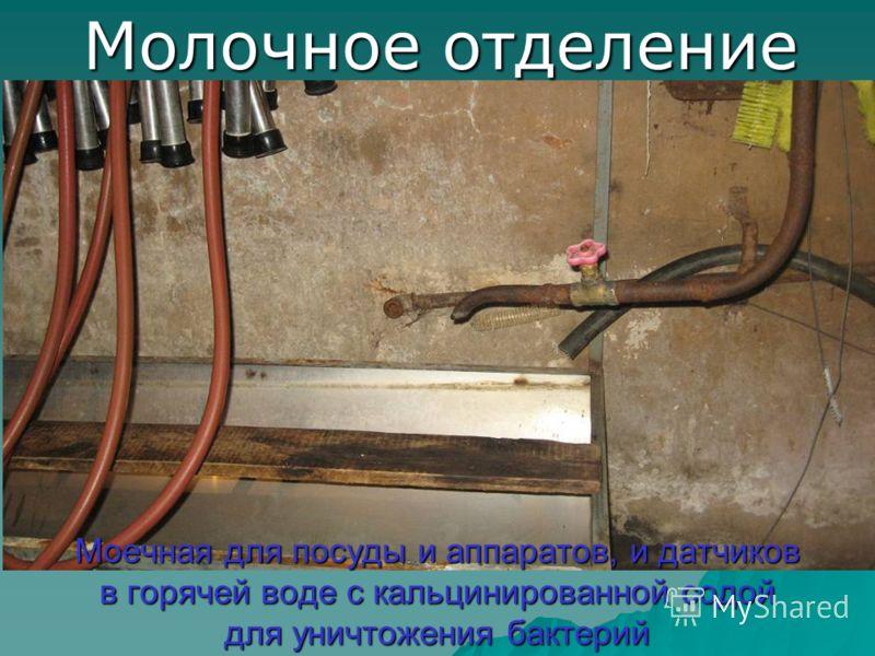 Моечная для посуды и аппаратов, и датчиков в горячей воде с кальцинированной содой для уничтожения бактерий Молочное отделение
