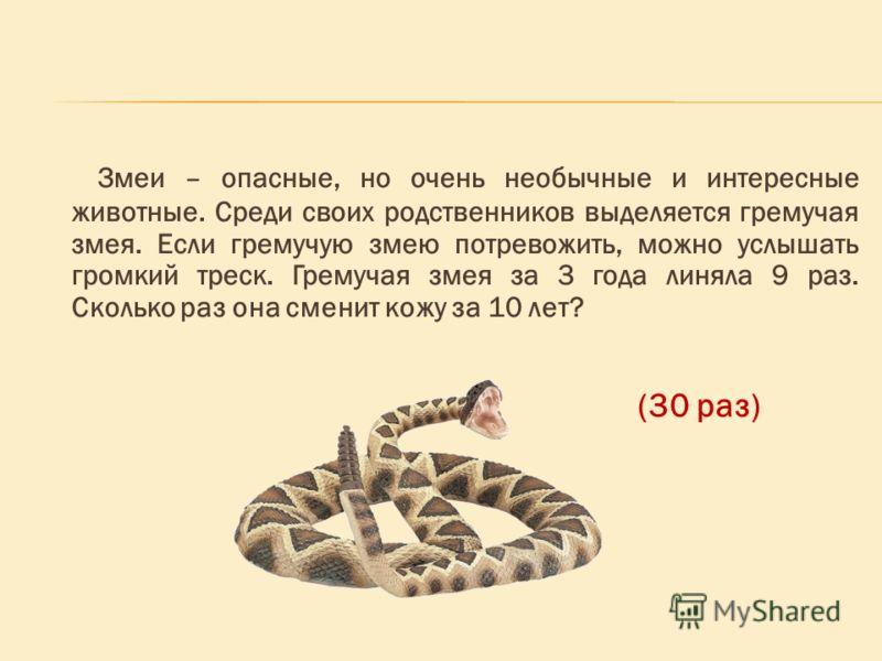 Змеи – опасные, но очень необычные и интересные животные. Среди своих родственников выделяется гремучая змея. Если гремучую змею потревожить, можно услышать громкий треск. Гремучая змея за 3 года линяла 9 раз. Сколько раз она сменит кожу за 10 лет? (
