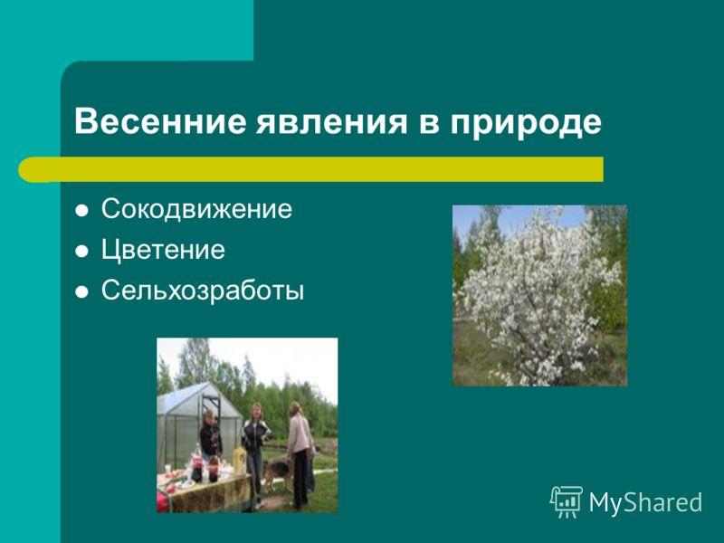 Картинки с цв весенними явлениями природы