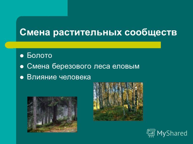 Смена растительных сообществ Болото Смена березового леса еловым Влияние человека