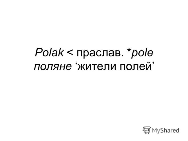 Polak < праслав. *pole поляне жители полей
