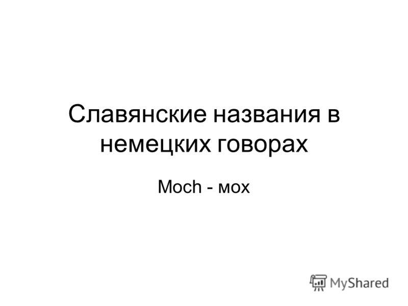 Славянские названия в немецких говорах Moch - мох