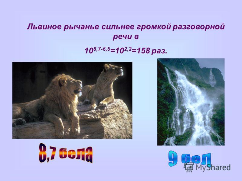Львиное рычанье сильнее громкой разговорной речи в 10 8,7-6,5 =10 2,2 =158 раз.