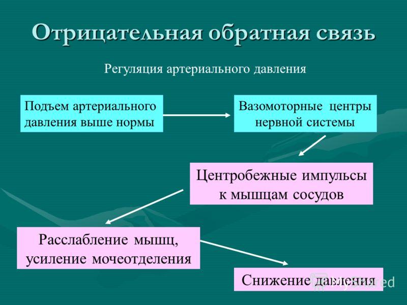 Регуляция артериального