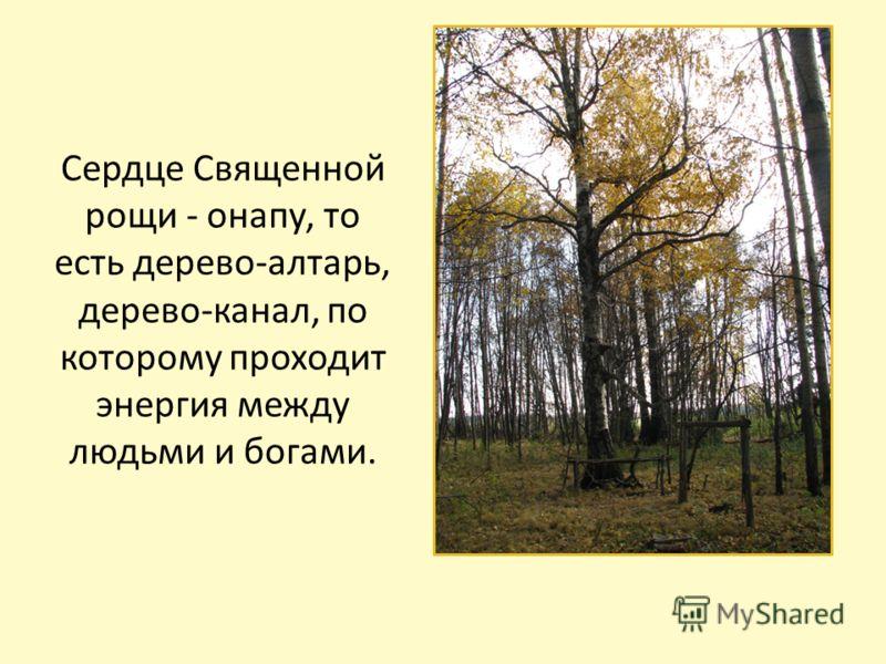 Сердце Священной рощи - онапу, то есть дерево-алтарь, дерево-канал, по которому проходит энергия между людьми и богами.