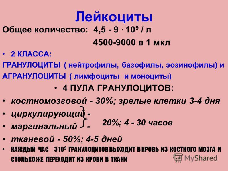 Лейкоциты Общее количество: 4,5 - 9. 10 9 / л 4500-9000 в 1 мкл 2 КЛАССА: ГРАНУЛОЦИТЫ ( нейтрофилы, базофилы, эозинофилы) и АГРАНУЛОЦИТЫ ( лимфоциты и моноциты) 4 ПУЛА ГРАНУЛОЦИТОВ: костномозговой - 30%; зрелые клетки 3-4 дня циркулирующий - маргинал