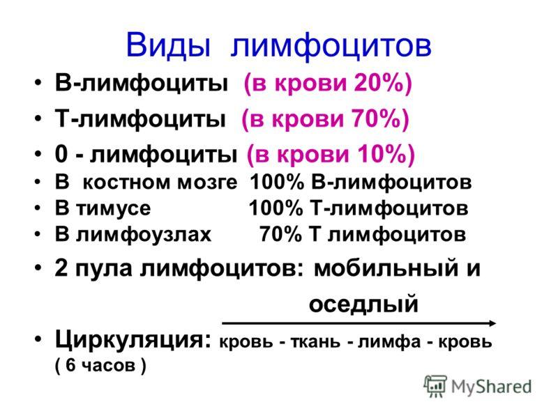 Виды лимфоцитов В-лимфоциты (в крови 20%) Т-лимфоциты (в крови 70%) 0 - лимфоциты (в крови 10%) В костном мозге 100% В-лимфоцитов В тимусе 100% Т-лимфоцитов В лимфоузлах 70% Т лимфоцитов 2 пула лимфоцитов: мобильный и оседлый Циркуляция: кровь - ткан