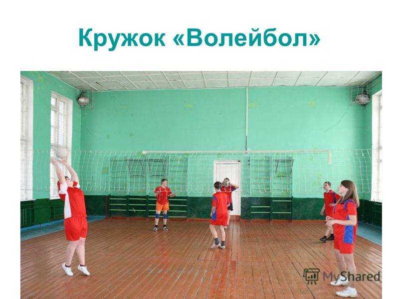 Кружок «Волейбол»