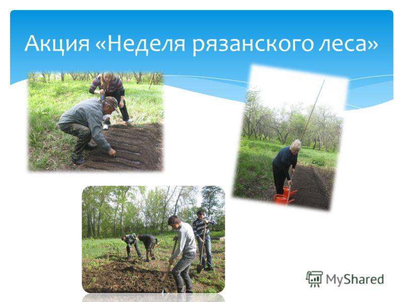 Акция «Неделя рязанского леса»