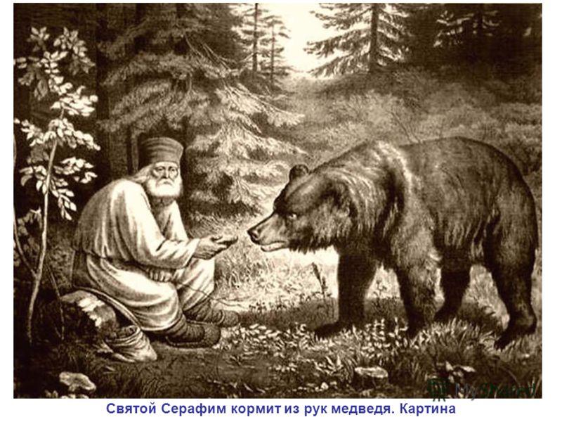 Святой Серафим кормит из рук медведя. Картина