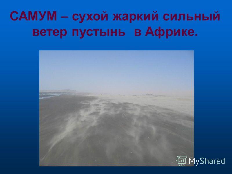 ТАЙФУН –ветер у восточных берегов Евразии.