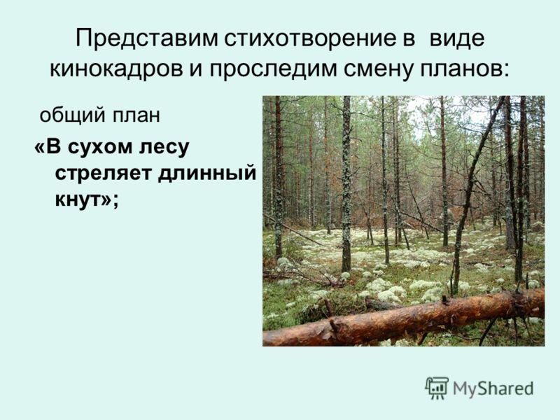 Представим стихотворение в виде кинокадров и проследим смену планов: общий план «В сухом лесу стреляет длинный кнут»;