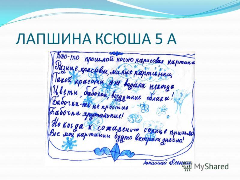 ЛАПШИНА КСЮША 5 А