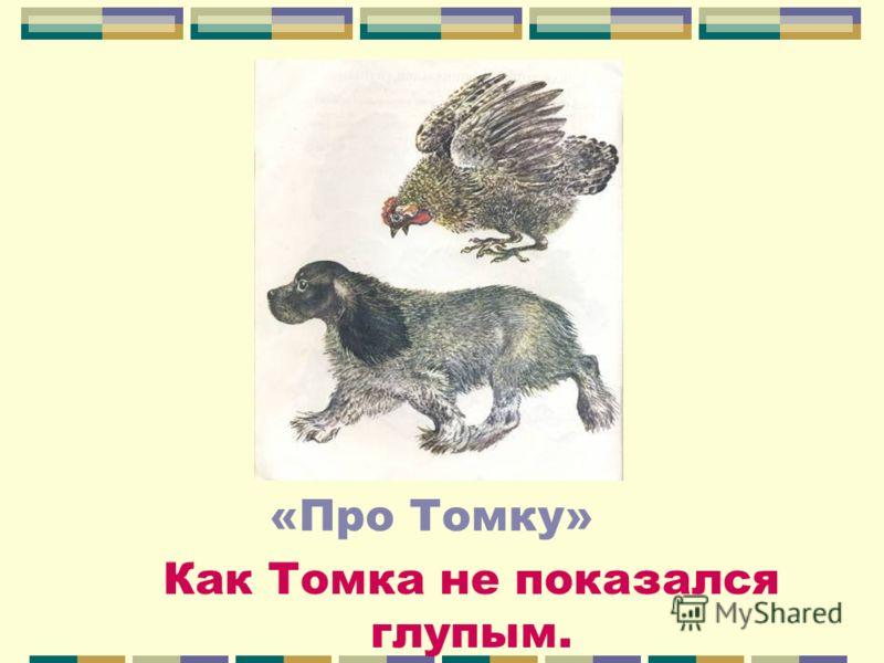 «Про Томку» Как Томка не показался глупым.