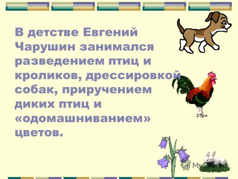 В детстве Евгений Чарушин занимался разведением птиц и кроликов, дрессировкой собак, приручением диких птиц и «одомашниванием» цветов.