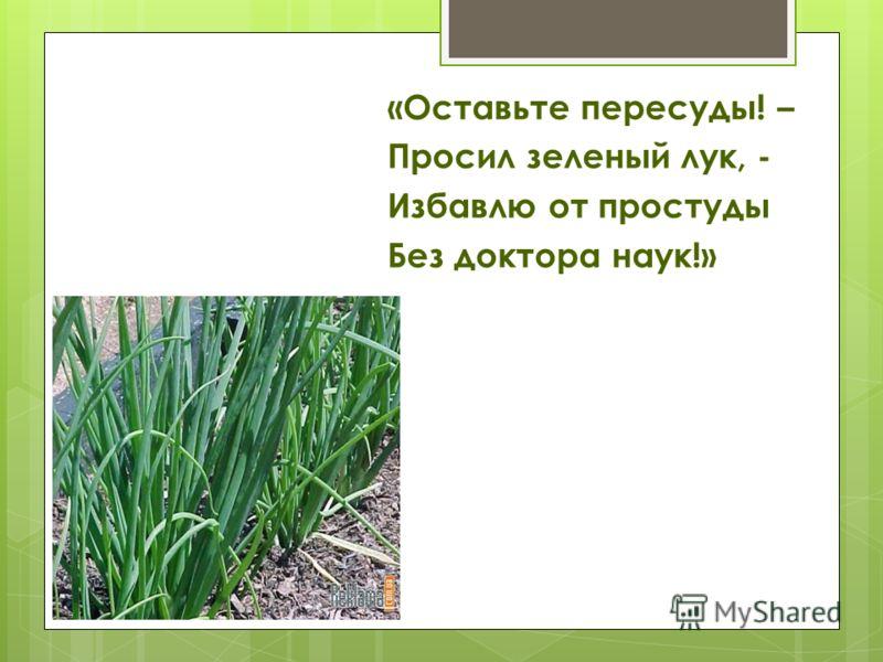 «Оставьте пересуды! – Просил зеленый лук, - Избавлю от простуды Без доктора наук!»