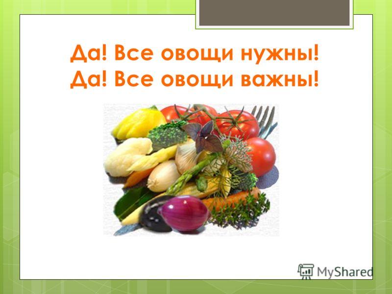 Да! Все овощи нужны! Да! Все овощи важны!