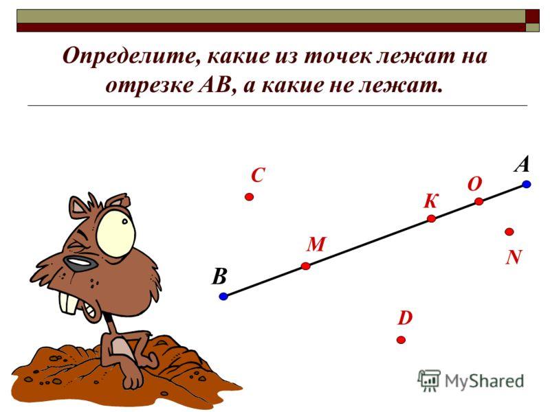 Определите, какие из точек лежат на отрезке АВ, а какие не лежат. В А С М О К D N